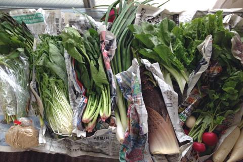 自然農法の野菜セット「矢戸田自然塾」
